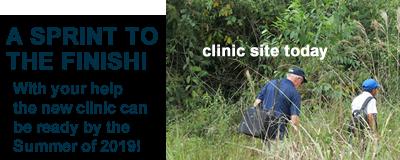 Clinic Campaign